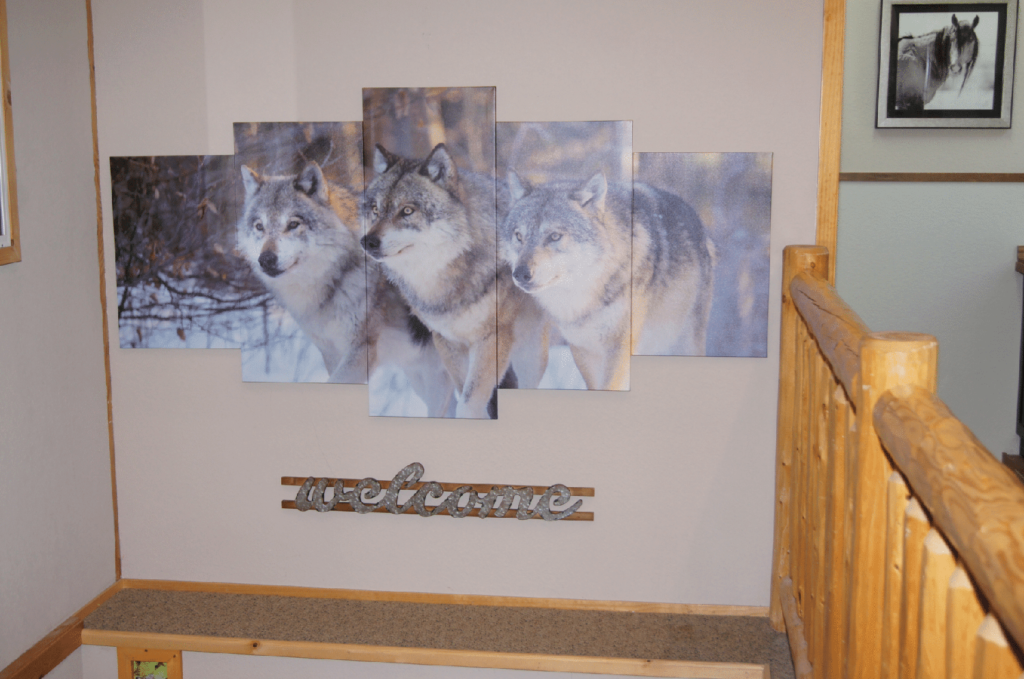 The Forest Wolves The Forest | Co-Shared Workplace | South Lake Tahoe, CA